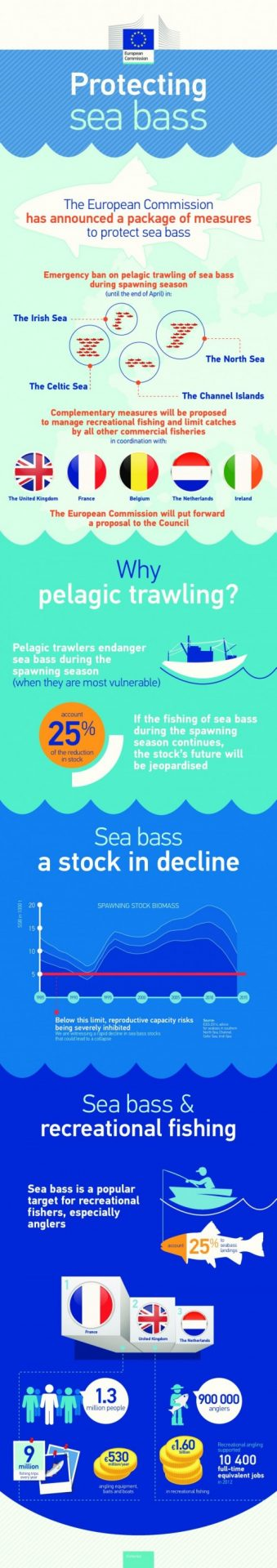 2015 seabass facts en fishing tails for Facts about fishing
