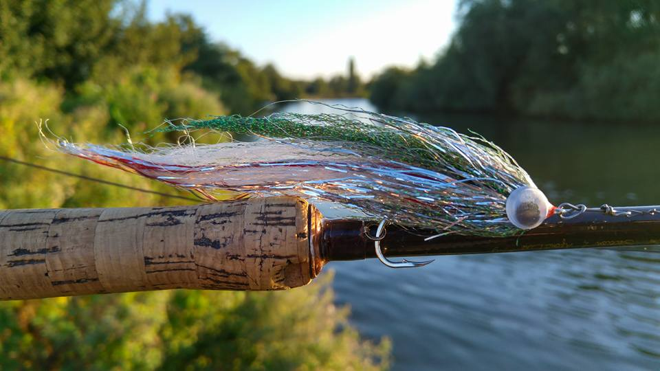 My paradise pike on the fly fishing tails for Pike fishing colorado