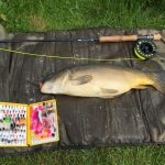 CARP – The Alternative approach.
