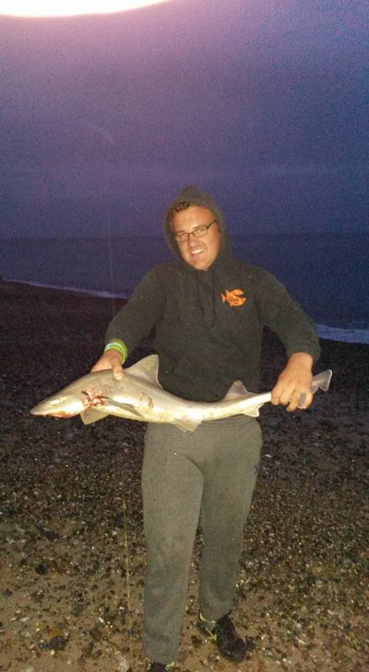 smoothhound Ryan white